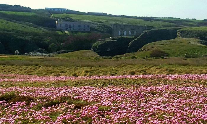 Journées du patrimoine 2018 - Visite libre de l'Espace Sarah Bernhardt