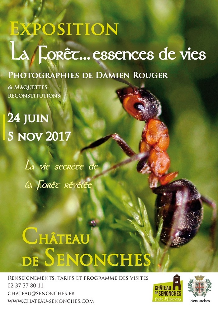 Journées du patrimoine 2017 - Visite Libre de l'exposition