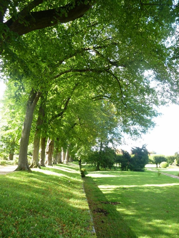 Journées du patrimoine 2017 - Visite libre des jardins
