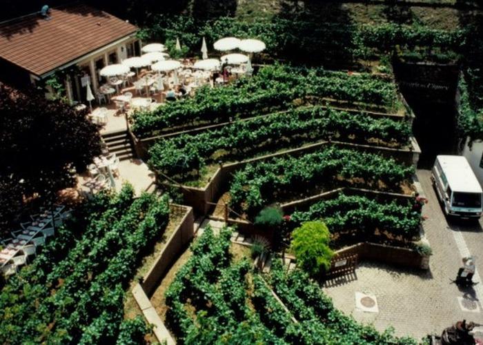 Journées du patrimoine 2017 - Visite libre du Chemin des vignes