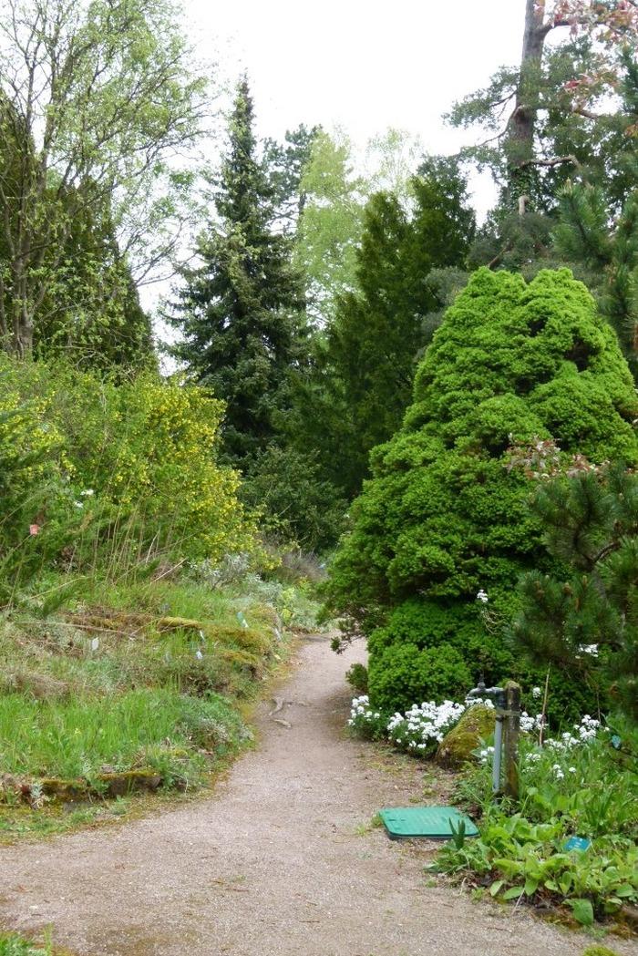 Journées du patrimoine 2018 - Jardin botanique de Saverne