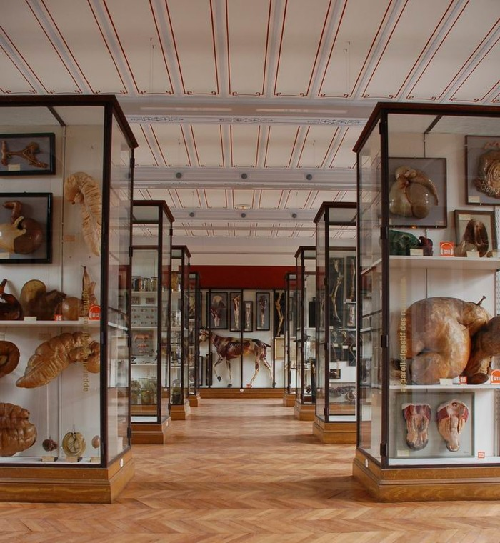 Journées du patrimoine 2017 - Visite libre du musée Fragonard