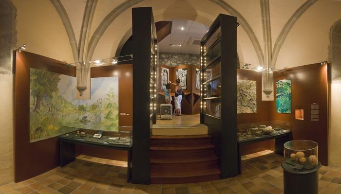 Crédits image : Musée gallo-romain de Chanaz