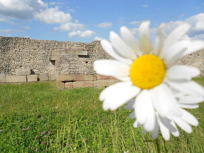 Journées du patrimoine 2018 - Visite libre du site archéologique de Jublains