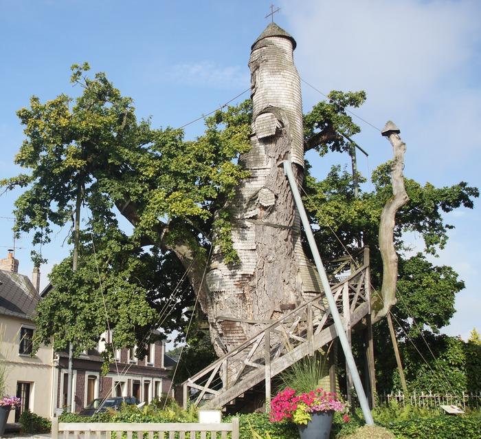 Journées du patrimoine 2018 - Visite guidée de l'église et du chêne d'Allouville