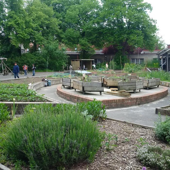 Crédits image : Jardins partagés de l'ADEP © ADEP