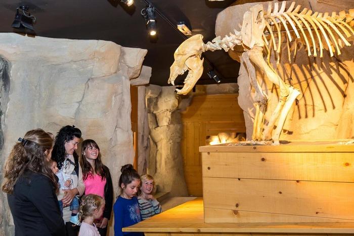 Journées du patrimoine 2018 - Visite commentée du musée de l'ours des cavernes.