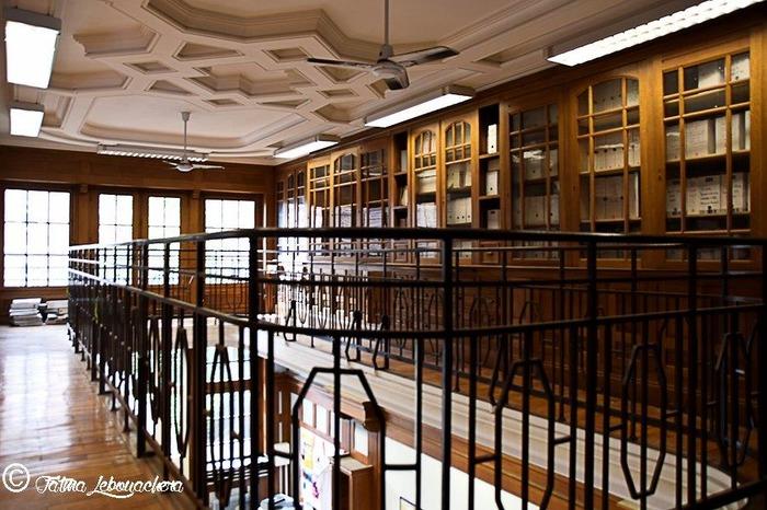 Crédits image : Lycée Turgot © F. Lebouackera