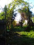 Rendez Vous aux Jardins 2018 -À la découverte d'un jardin secret