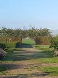 Rendez Vous aux Jardins 2018 -Visite commentée des différents espaces des jardins animée par les jardiniers