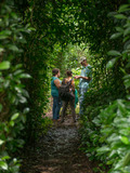 Journées du patrimoine 2016 -A la découverte du thé et du géranium made in Réunion