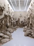 Nuit des musées 2018 -Adel Abdessemed, L'antidote