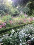 Rendez Vous aux Jardins 2018 -Alice au pays des merveilles