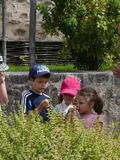 Rendez Vous aux Jardins 2018 -Animations familiales dans le jardin médiéval Férolle de Parthenay