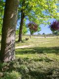 Journées du patrimoine 2016 -Arboretum