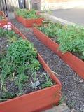 Rendez Vous aux Jardins 2018 -Atelier de jardinage et sensibilisation à la permaculture