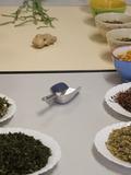 Rendez Vous aux Jardins 2018 -Atelier herboristerie : découverte des plantes médicinales sauvages