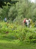 Rendez Vous aux Jardins 2018 -Atelier interactif sur la permaculture au jardin