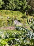 Rendez Vous aux Jardins 2018 -Atelier pratique de jardinage