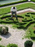 Rendez Vous aux Jardins 2018 -Atelier de jardinage