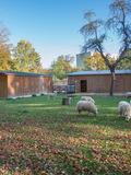 Rendez Vous aux Jardins 2018 -Ateliers à la ferme pédagogique de Marcouville