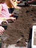 Rendez Vous aux Jardins 2018 -Ateliers jardinage