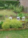 Rendez Vous aux Jardins 2018 -Ateliers sur les plantes sauvages et tinctoriales