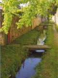 Rendez Vous aux Jardins 2018 -Visite commentée « Balade au fil de l'eau »