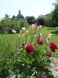 Rendez Vous aux Jardins 2018 -Balade commentée des jardins de Cap Loire