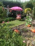 Rendez Vous aux Jardins 2018 -Balade dans le monde d'Alice aux pays des Merveilles