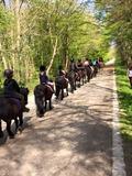 Journées du patrimoine 2016 -Balade en poney, par les écuries du poney d'or