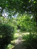 Rendez Vous aux Jardins 2018 -Balade historique au coeur du jardin de l'Harmas