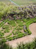 Rendez Vous aux Jardins 2018 -Visite libre dans le parc et les jardins du Château de Montmelas