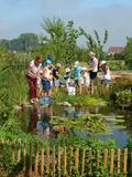Rendez Vous aux Jardins 2018 -Visite à la découverte des légumes anciens