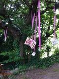 Rendez Vous aux Jardins 2018 -Bibliothèque et salon de thé au jardin