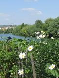 Journées du patrimoine 2016 -Balade et découverte des bords de Marne