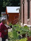 Rendez Vous aux Jardins 2018 -Bourse aux plantes