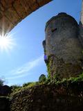 Journées du patrimoine 2016 -Chantier participatif sur la Forteresse de Montaigu-le-Blin