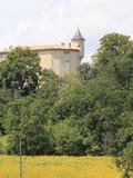Journées du patrimoine 2016 -Visite libre du Château de Puycalvel