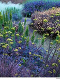 Rendez Vous aux Jardins 2018 -Chemin du bleu au jardin des arts pour les scolaires