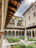 Journées du patrimoine 2016 -Cloître Saint-André-le-Bas