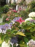 Rendez Vous aux Jardins 2018 -Visite libre du Clos Millet