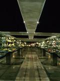 Journées du patrimoine 2016 -Visite libre de la collection de minéraux