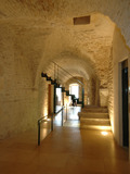Nuit des musées 2018 -Collection permanente du Musée Zervos