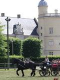 Rendez Vous aux Jardins 2018 -Concours d'attelage au parc du château de Bouthéon