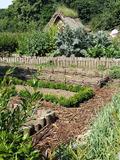 Rendez Vous aux Jardins 2018 -Conférence sur les plantes médiévales