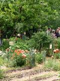 Rendez Vous aux Jardins 2018 -Connaissances en partage autour d'une brouette : toutes vos questions ont une réponse