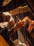 Nuit des musées 2018 -Concert D'Echos et de cordes