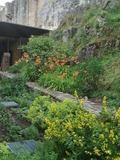 Rendez Vous aux Jardins 2018 -De la forêt au jardin