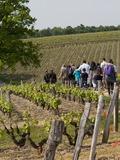 Journées du patrimoine 2016 -De la vigne au verre de vin